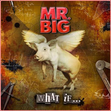 Mr  Big - What If    (2011) Flac