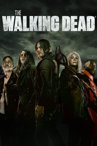 The Walking Dead S11E03 iNTERNAL 1080p HEVC x265-MeGusta