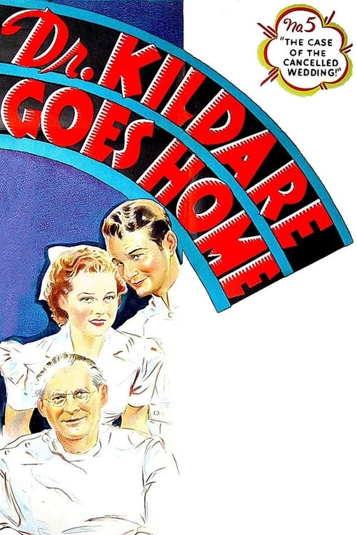 Dr Kildare Goes Home 1940 DVDRip x264